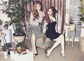 TaeTiSeo The Celebrity