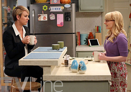 Teen テレビ shows 壁紙 entitled The Big Bang Theory 8.01 ''The Locomotion Interruption''
