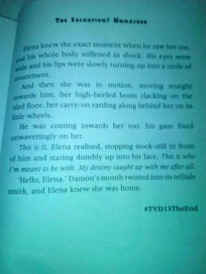 The Ending Of The TVD Books!