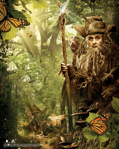 द हॉबिट वॉलपेपर entitled The Hobbit: An Unexpected Journey - Radagast Poster