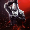 The Witcher 3: Wild Hunt - video-games photo