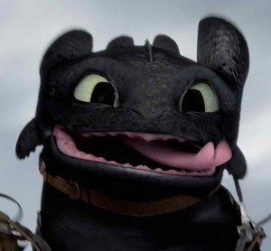 Toothless - HTTYD 2
