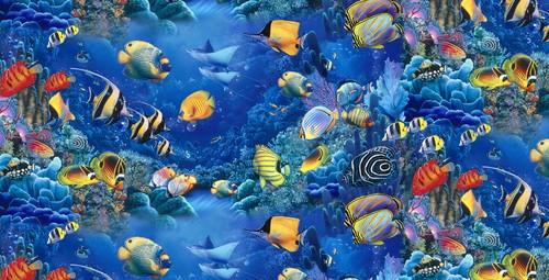 Nocturnal Mirage fond d'écran called Tropical poisson