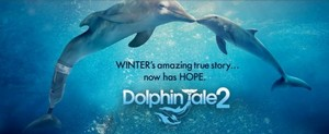 Winter and Hope