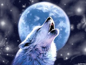 Wolfiewoof