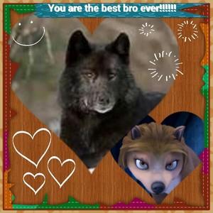 آپ are the best bro ever!