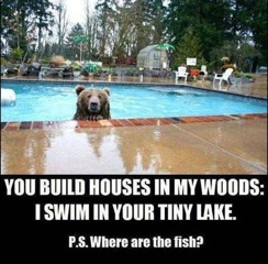 You build houses in my woods...