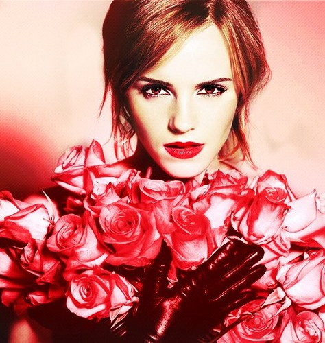 Hermione Granger wallpaper titled emma with the roses