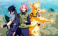 new era team 7