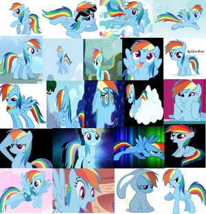 poni, pony r the best
