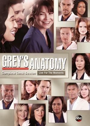 season 10 dvd