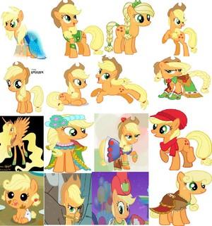 wooho poni, pony