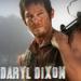 ... the Daryl Dixon line (icon) - daryl-dixon icon