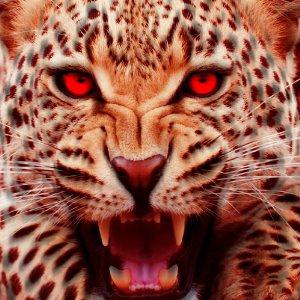 Angry Cheetah