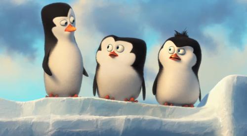 पेंग्विन्स ऑफ मॅडगास्कर वॉलपेपर titled Baby Penguins