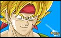 Bardock Super Guerrero - dragon-ball photo