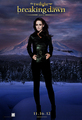 Bella Cullen - twilight-series photo