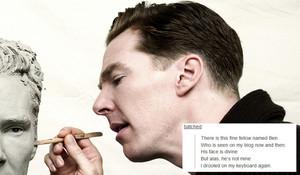 Benedict - Tumblr Text Posts