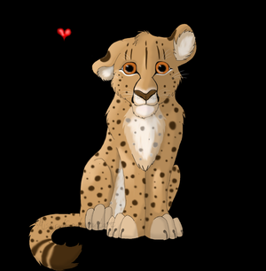 Cheetah Loves 你