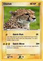 Cheetah Pokemon Card