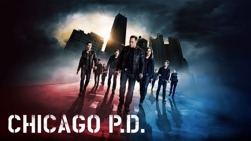 Chicago PD (TV Series) wallpaper containing a fountain and a triceratops titled Chicago PD