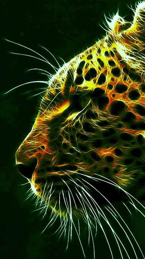 Cool Cheetah 10