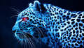 Cool Cheetah