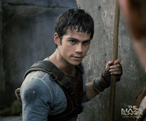 Dylan O'Brien karatasi la kupamba ukuta called Dylan as Thomas in The Maze Runner