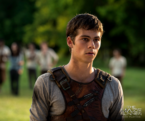 Dylan O'Brien karatasi la kupamba ukuta probably containing a green beret titled Dylan as Thomas in The Maze Runner