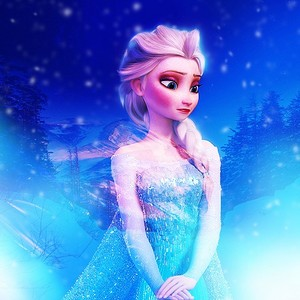 Elsa - FDS