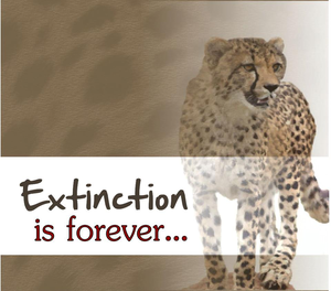 Extinction...Is Forever...