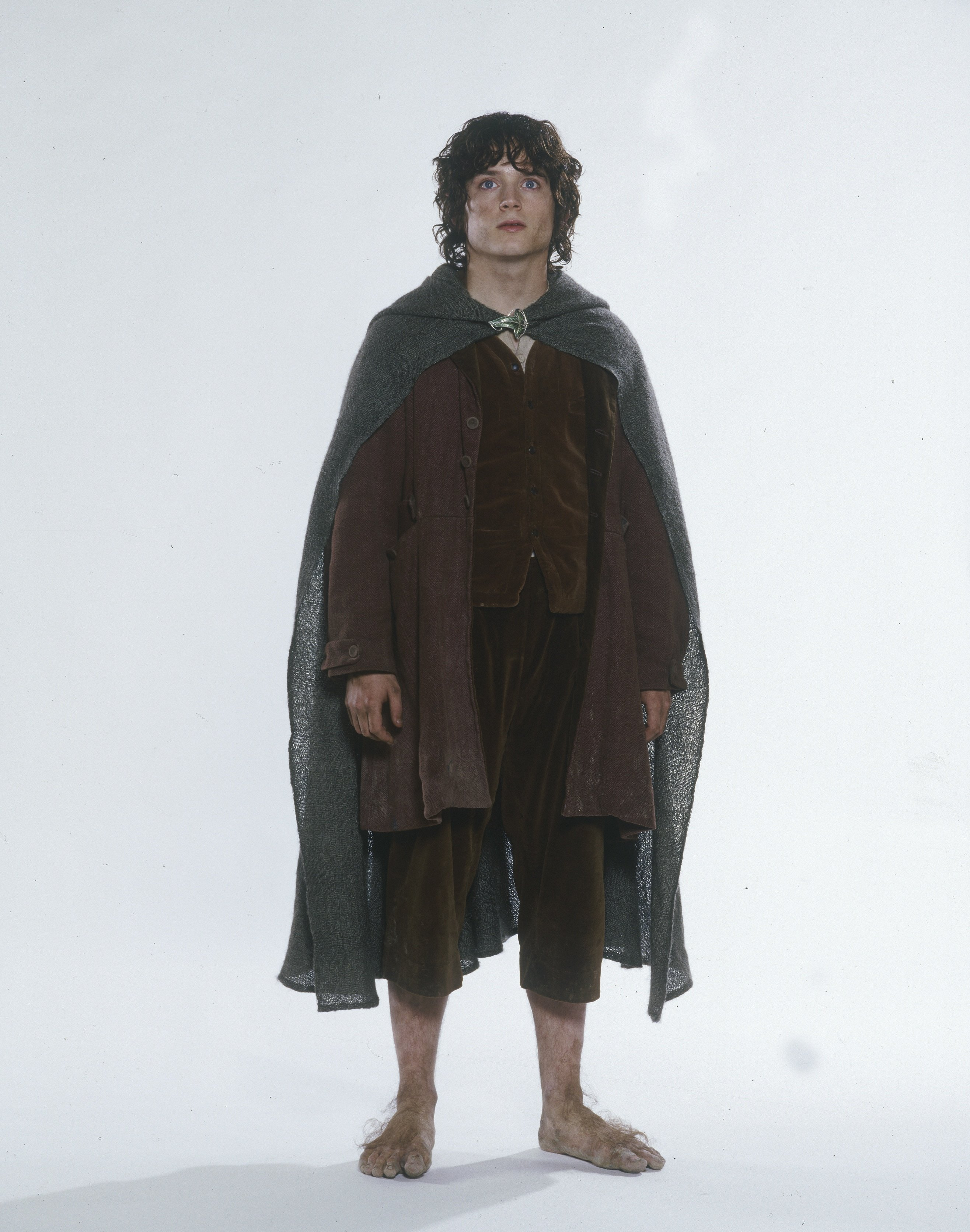 Frodo lord of the rings full body