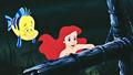HD Blu-Ray Disney Princess Screencaps - Flounder & Princess Ariel - disney-princess photo