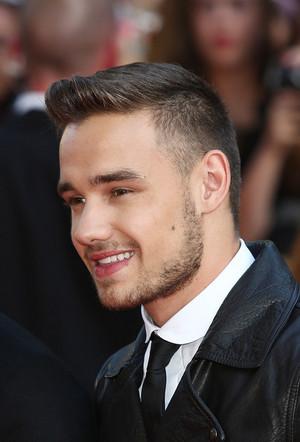 Liam Payne Perfection ♥