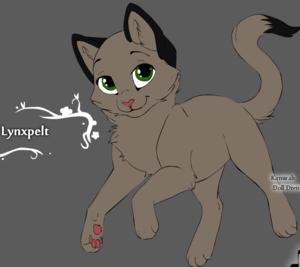 Lynxpelt