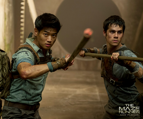 The Maze Runner 바탕화면 possibly containing a 라이플 총병, 라이플 맨, 라이플 총 병 titled Minho and Thomas