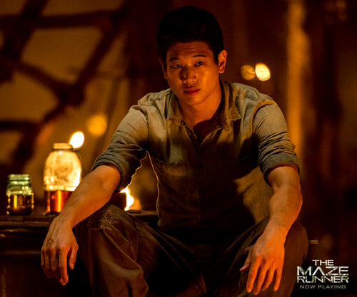 The Maze Runner images Minho HD wallpaper and background ...