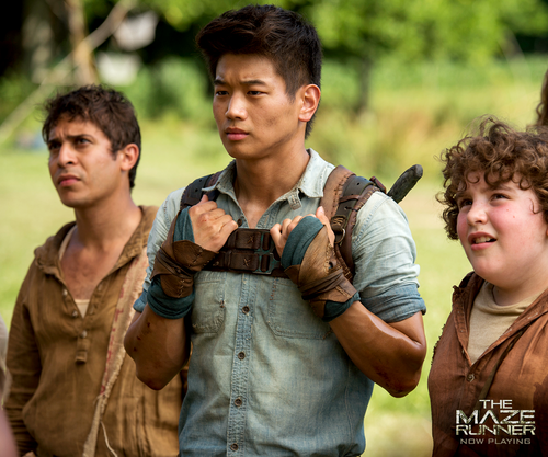 The Maze Runner kertas dinding with a green beret, a rifleman, seragam, and maklumat titled Minho