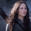 Mockingjay: District 12 - the-hunger-games photo