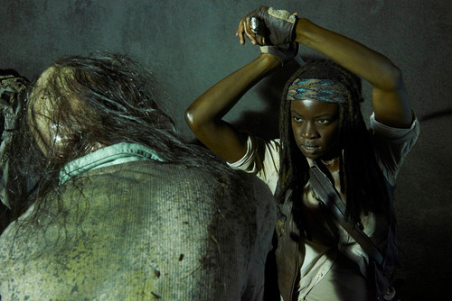 The Walking dead wallpaper titled New Character Promo ~ Michonne
