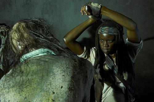 Walking Dead fond d'écran entitled New Character Promo ~ Michonne