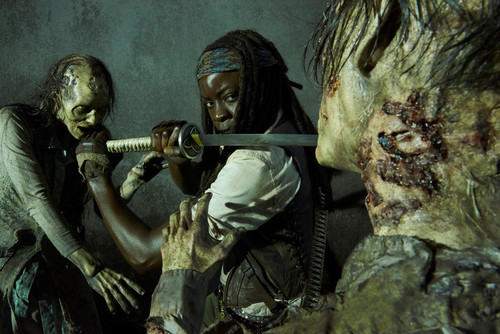 Ходячие мертвецы Обои entitled New Character Promo ~ Michonne