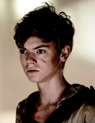 The Maze Runner Hintergrund possibly with a portrait entitled Newt - Maze Runner