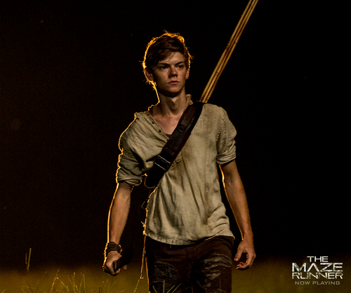 The Maze Runner 바탕화면 titled Newt
