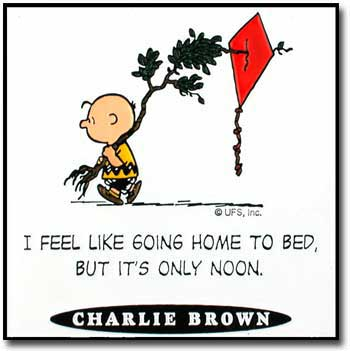 Snoopy and charlie brown quotes quotesgram - Charlie brown bilder ...