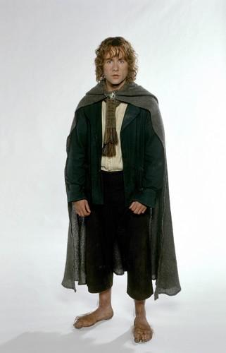 el señor de los anillos fondo de pantalla entitled Peregrin TT