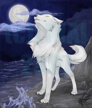 River spirt بھیڑیا