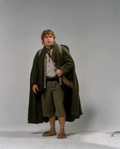 द लॉर्ड ऑफ द रिंग्स वॉलपेपर probably containing an overgarment, a box coat, and an outerwear titled Sam Lotr TT