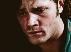 Sam Winchester ●