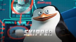Skipper ;)